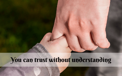 You can trust without understanding